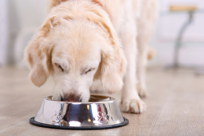 pet food recall